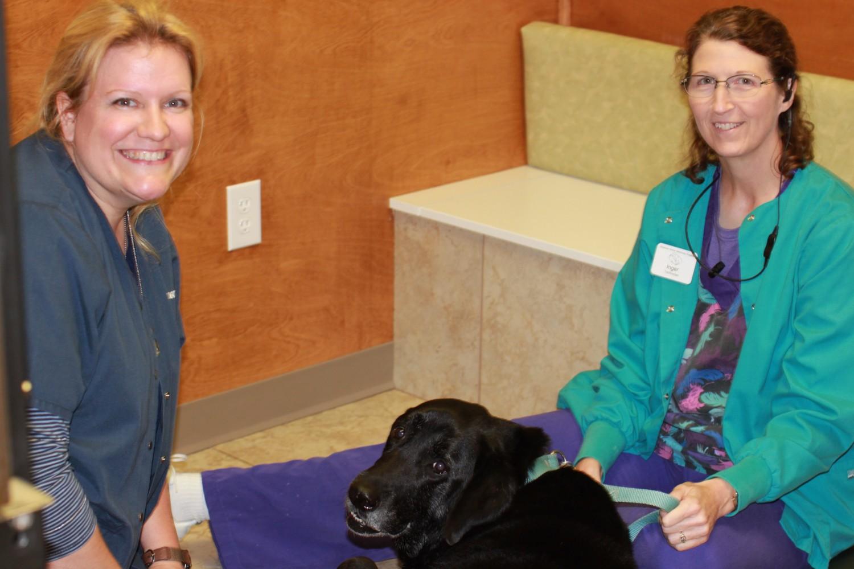 Stuebner Airline Veterinary Hospital, Spring TX
